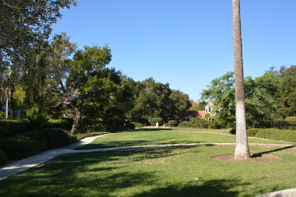 Cathedral Pointe Open Space
